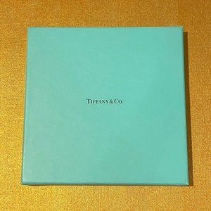 Tiffany & Co Necklace Scarf Gift Box Necklace NEW6